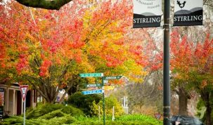 Stirling main street