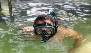 Swim with the croc's